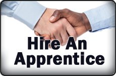 Hire an Apprentice